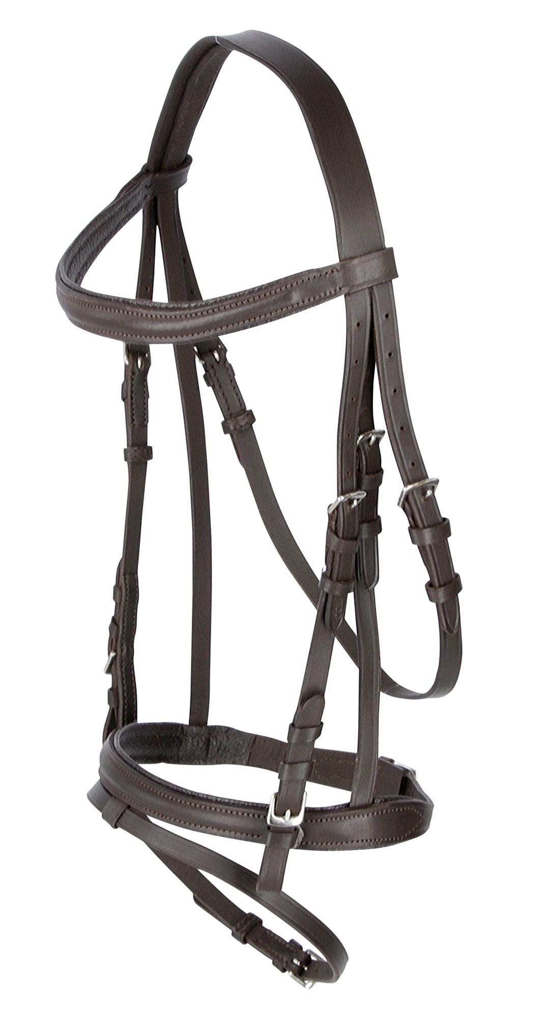 schmales Reithalfter,englisches Reithalfter für Trensen schwarz Leder  Warmblut